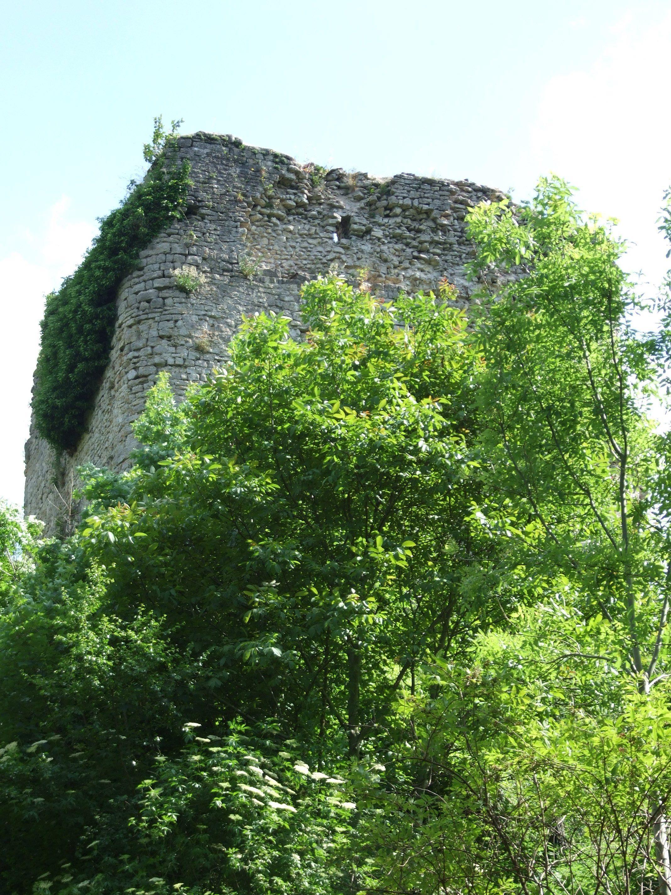 CIRCUIT PEDESTRE - CIRCULAIRE DE L'AULNOYE