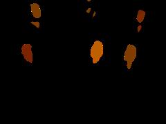 image - ATELIER THEATRE