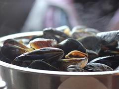 image - SOIREE MOULES FRITES
