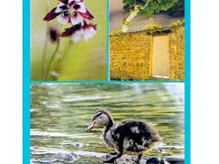 image - EXPOSITION PHOTOS