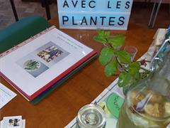 image - RENDEZ-VOUS AVEC LES PLANTES