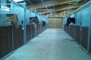 "image - HORSE RIDING SCHOOL ""DES PROYES"""