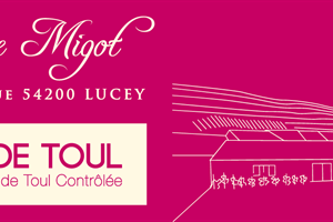 image - THE DOMAINE MIGOT IN LUCEY