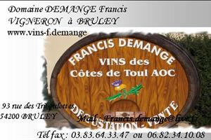 image - THE DOMAINE FRANCIS DEMANGE IN BRULEY