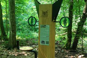 image - MASSIF FORESTIER DE MEINE