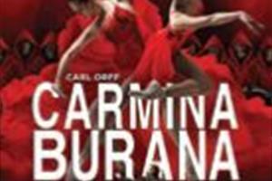 image - SPECTACLE - CARMINE BURANA
