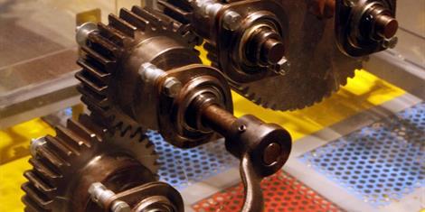 image - EXPO 'PROMENONS-NOUS DANS LES BOIS'