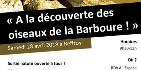 image - SORTIE NATURE A LA DECOUVERTE DES OISEAUX DE LA BARBOURE