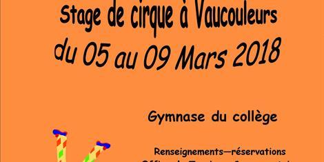 image - STAGE DE CIRQUE