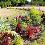 Société d'Horticulture de Lunéville