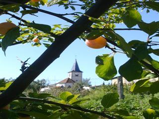 Balade à Rozelieures - CC du Bayonnais