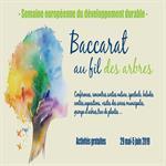 Ville de Baccarat