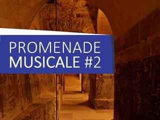 PROMENADE MUSICALE DU CHÂTEAU AU JARDIN