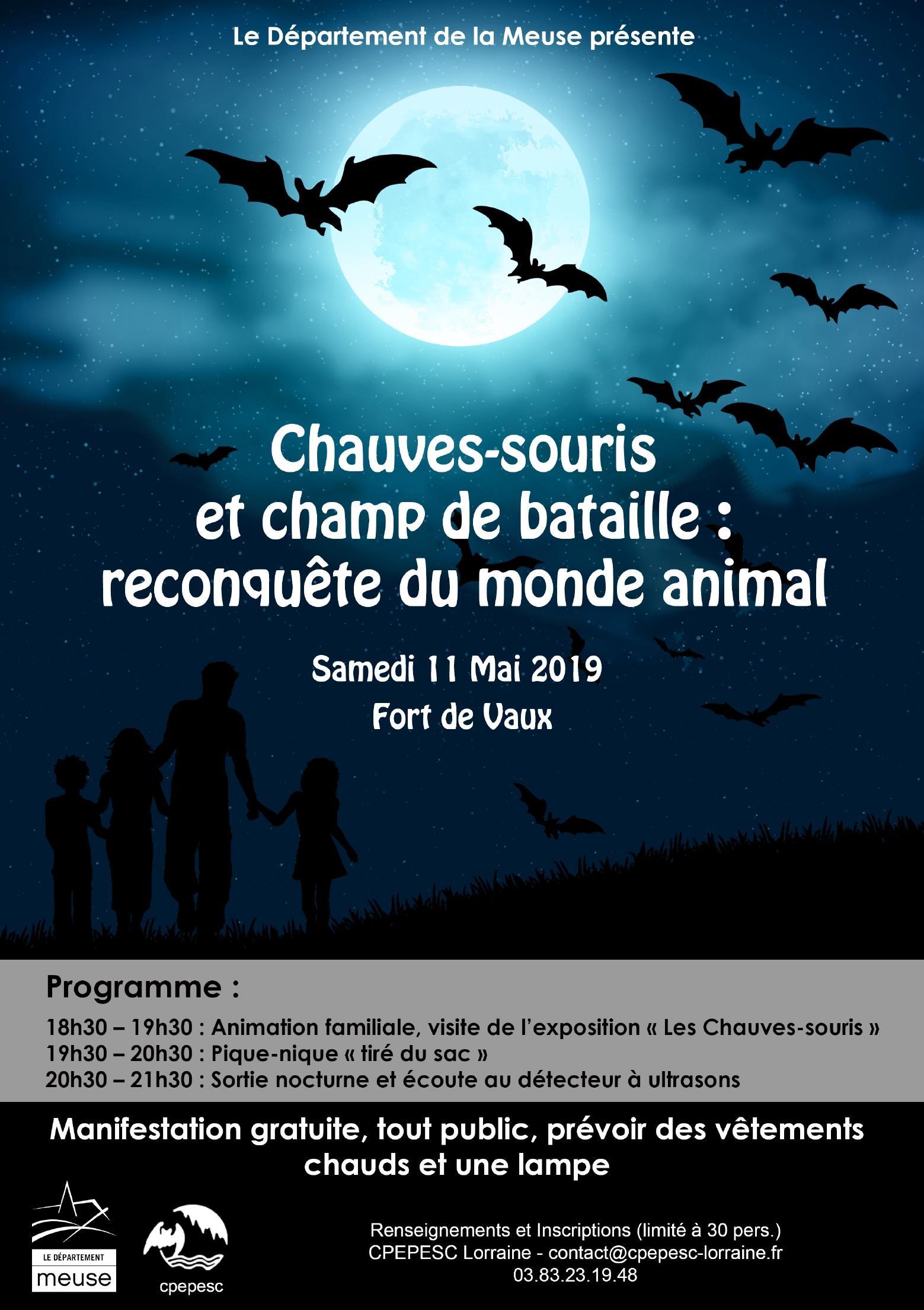 CHAUVES-SOURIS ET CHAMP DE BATAILLE : RECONQUÊTE DU MONDE ANIMAL