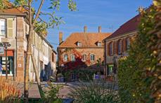 Patrice Bucher - OT Pays de Phalsbourg
