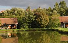 reflet dans l'étang