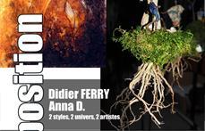 didier ferry