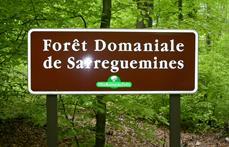 Sarreguemines Tourisme