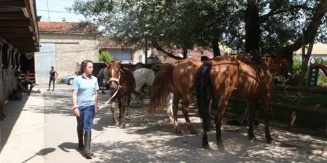 image - CENTRE EQUESTRE LE RANCH