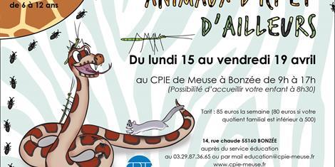 image - ACCUEIL DE LOISIRS ENFANTS