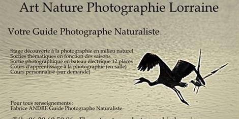 image - STAGES D'INITIATION ET PERFECTIONNEMENT DE PHOTOGRAPHIE